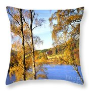 Shades Of Gold Throw Pillow