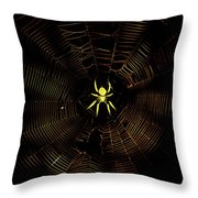 Golden Silk Throw Pillow