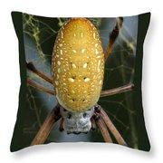 Golden Silk Spider 1 Throw Pillow
