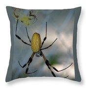 Golden Silk Spider 2 Throw Pillow