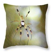 Golden Silk Spider Throw Pillow