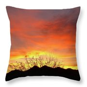 Unvieling Throw Pillow