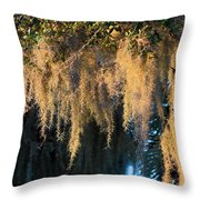 Golden Spanish Moss Throw Pillow