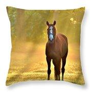Golden Spirit 1 Throw Pillow