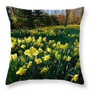 Golden Spring Carpet Throw Pillow