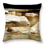 Golden Stream Throw Pillow