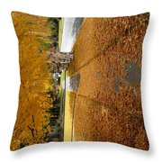 Golden Streets Throw Pillow