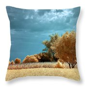 Golden Summerscape Throw Pillow by Helga Novelli