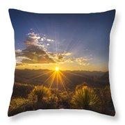 Golden Sunlight Desert Scene Throw Pillow