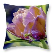 Golden Sunset Tulip Throw Pillow