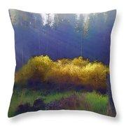 Golden Surprise Throw Pillow