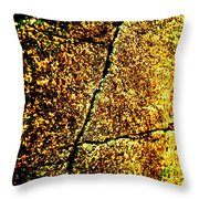 Golden Texture Abstract Throw Pillow