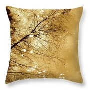 Golden Tones Throw Pillow