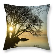 Golden Tranquility - Lacy Tree Silhouettes On The Lake Shore Throw Pillow