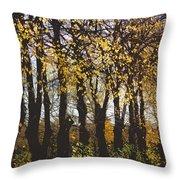 Golden Trees 1 Throw Pillow