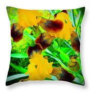 Golden Trio Of Iris Throw Pillow