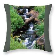 Golden Trout Wilderness Throw Pillow