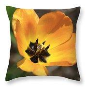 Golden Tulip Petals Throw Pillow