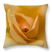 Golden Unicorn Rose Throw Pillow