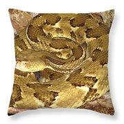 Golden Viper Throw Pillow