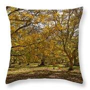 Golden Walnut Orchard II Throw Pillow