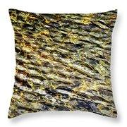 Golden Water On Mountain Lake Throw Pillow