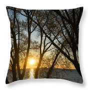 Golden Willow Sunrise - Greeting A Bright Day On The Lake Throw Pillow