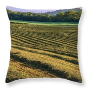 Golden Windrows Throw Pillow