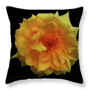 Golden Wonder Throw Pillow