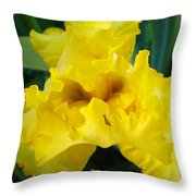Golden Yellow Iris Flower Garden Irises Flora Art Prints Baslee Troutman Throw Pillow