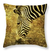 Golden Zebra  Throw Pillow