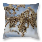 Goldenrod In The Snow Throw Pillow