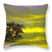 Goldenrod Oak Santa Ynez California 2 Throw Pillow