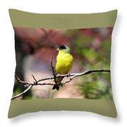 Goldfinch 042914d Throw Pillow