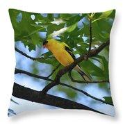 Goldfinch In Oak Tree Throw Pillow