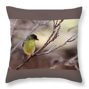 Goldfinch On Branch 032814a Throw Pillow