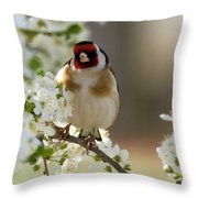 Goldfinch Spring Blossom Throw Pillow
