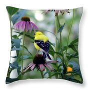 Goldfinch Visiting Coneflower Throw Pillow