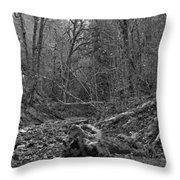 Goldstream Provincial Park Black And White Throw Pillow