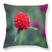 Gomphrena Flower Throw Pillow