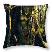 Gondwanaland Dreamtime Throw Pillow