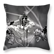 Gone To Seed Berries And Vines Throw Pillow
