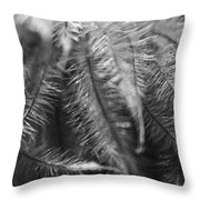 Gone To Seed Clematis Throw Pillow