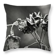 Gone To Seed Hibiscus Throw Pillow