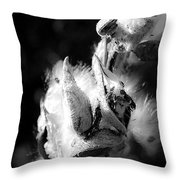 Gone To Seed Milkweed 1 Throw Pillow