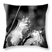 Gone To Seed Milkweed 2 Throw Pillow