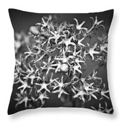 Gone To Seed Phlox Throw Pillow