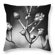 Gone To Seed Rose Hips Throw Pillow