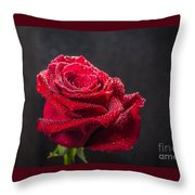 Gonorrhea Throw Pillow