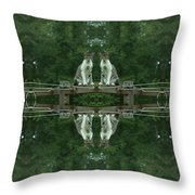 Goober Reflectoscope Throw Pillow